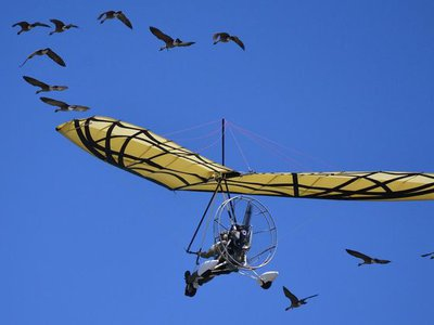 Tens of millions of years of bird evolution guided some of the most important elements of human-powered flight.N