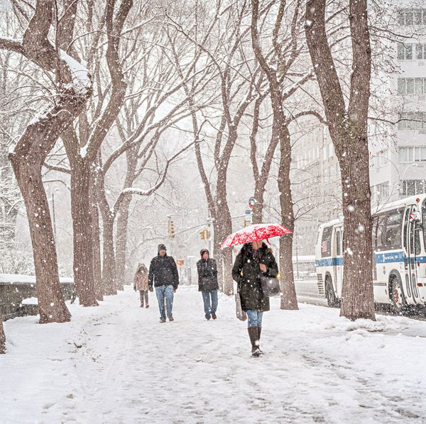 Fifth Avenue Snowfall, New York, NY thumbnail