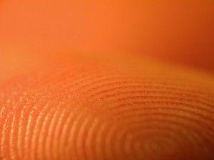 20110520104112fingerprint-300x225.jpg