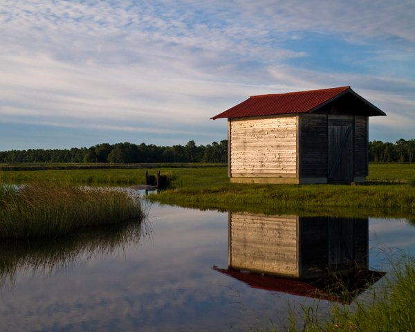 Pump house on a cranberry bog in South Jersey thumbnail