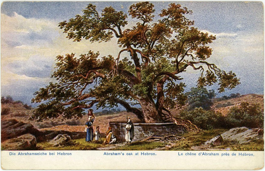 An image of a postcard with a tree in the middle.