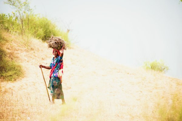 Indian cowgirl among hot fields thumbnail