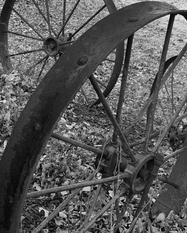 Old Wagon Wheels thumbnail