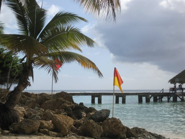 Palms and Piers in Tobago thumbnail