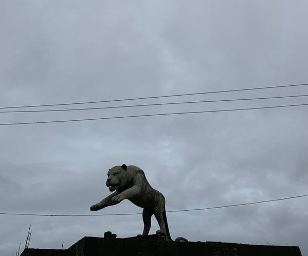 Panther made in top of a construction. thumbnail