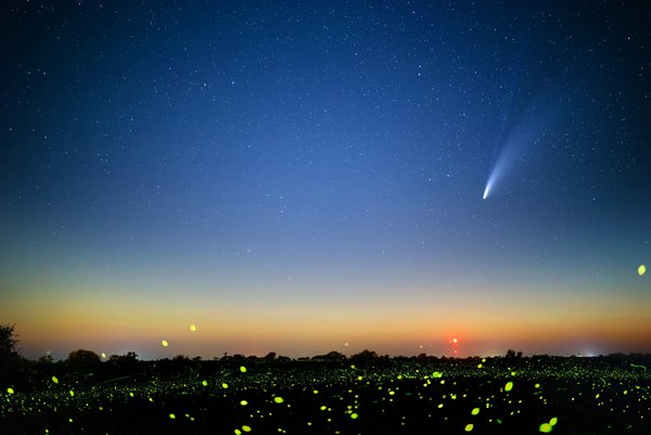Comet Neowise and Fireflies thumbnail
