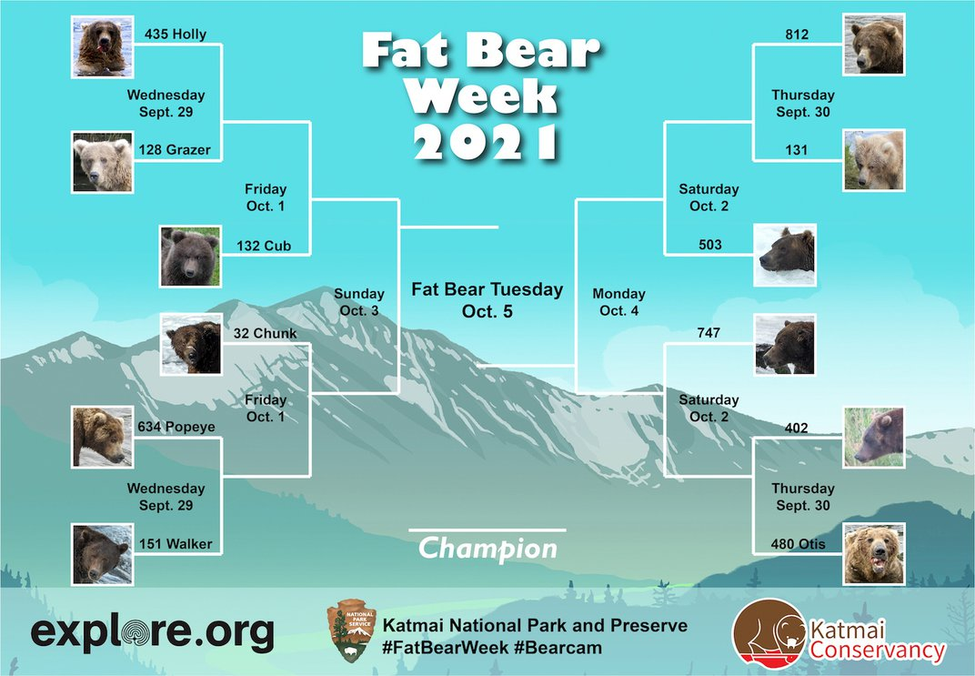Meet the Bodaciously Bulky Bears of Fat Bear Week 2021
