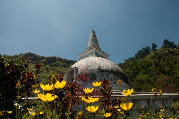 Pagoda Through Flower Garden thumbnail