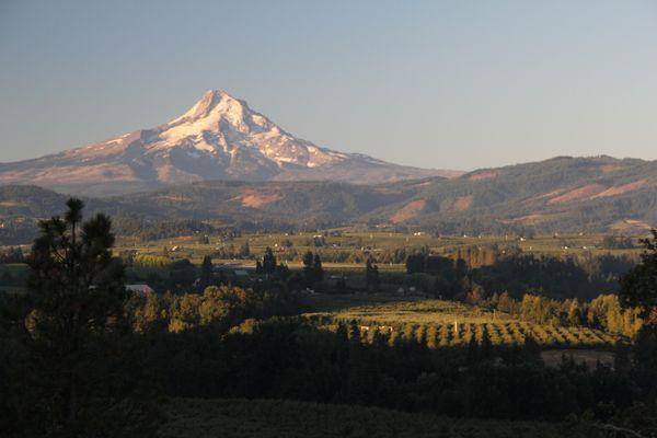 Mt. Hood - The North Face thumbnail