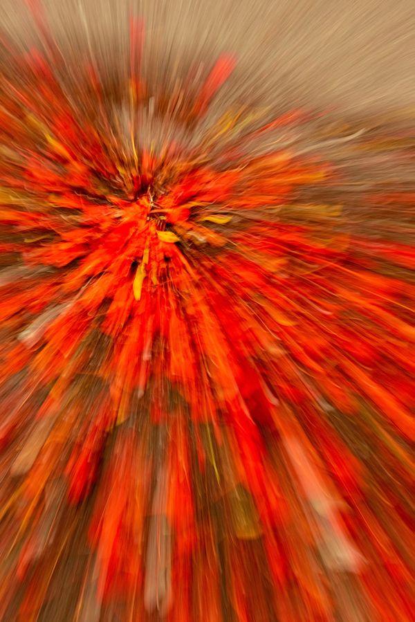 Fragile like a bomb II thumbnail