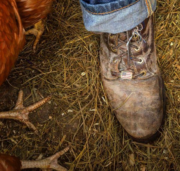 Boots Americana thumbnail