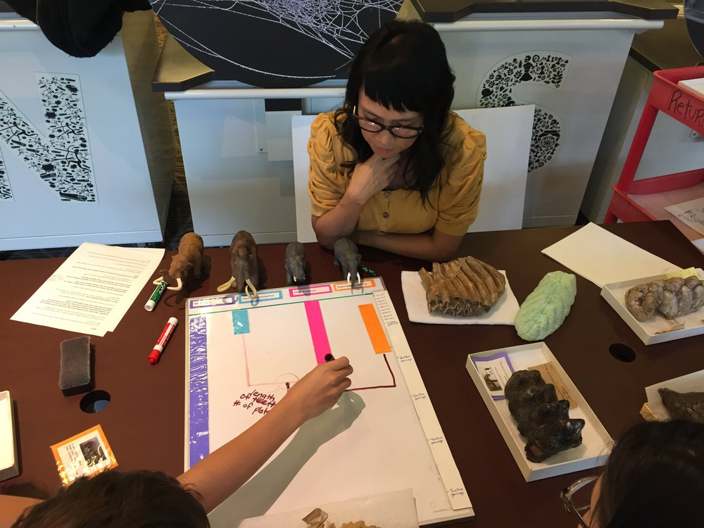 """Education Specialist Gale Robertson helps museum visitors test prototypes of hands-on activities that will be in """"The David H. Koch Hall of Fossils—Deep Time"""" when it opens June 8 at the Smithsonian's National Museum of Natural History. (Smithsonian Institution)"""