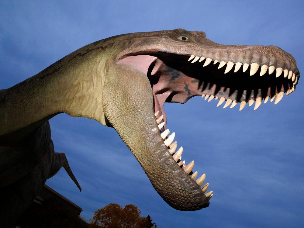DEC15_J03_DinosaurPark.jpg