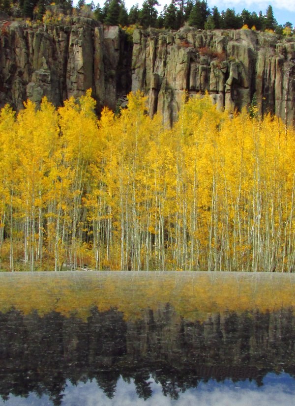 Mountain aspen leaves color change with reflection on top a car. thumbnail