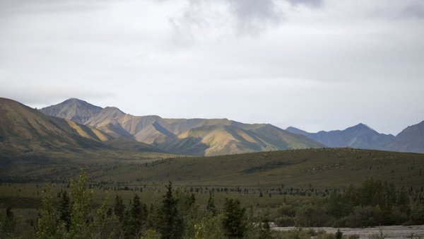 denali national park thumbnail