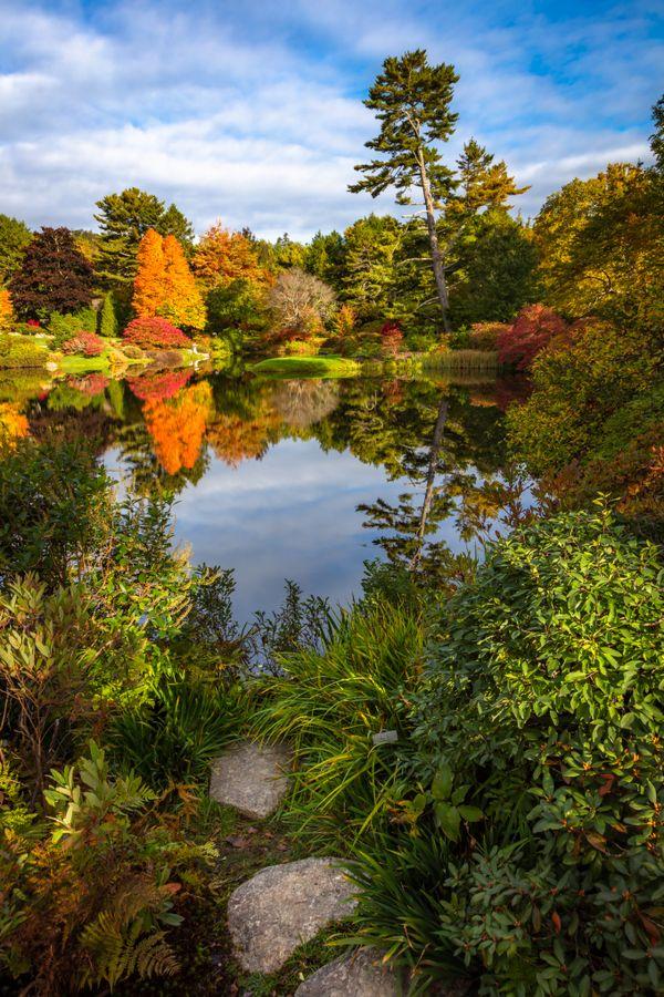 Asticou Azalea Gardens thumbnail