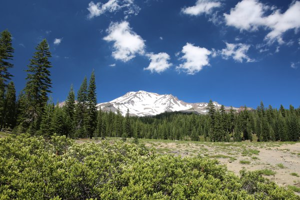 Snow covered Mount Shasta in July thumbnail