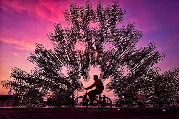 Cyclists thumbnail