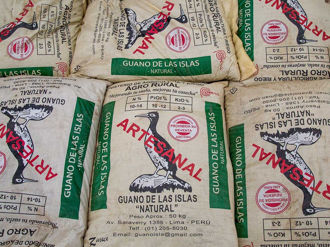 Guano bags ready for sale