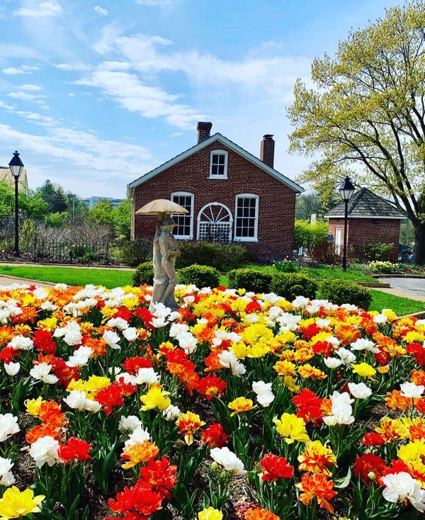 Des Peres Park Missouri thumbnail