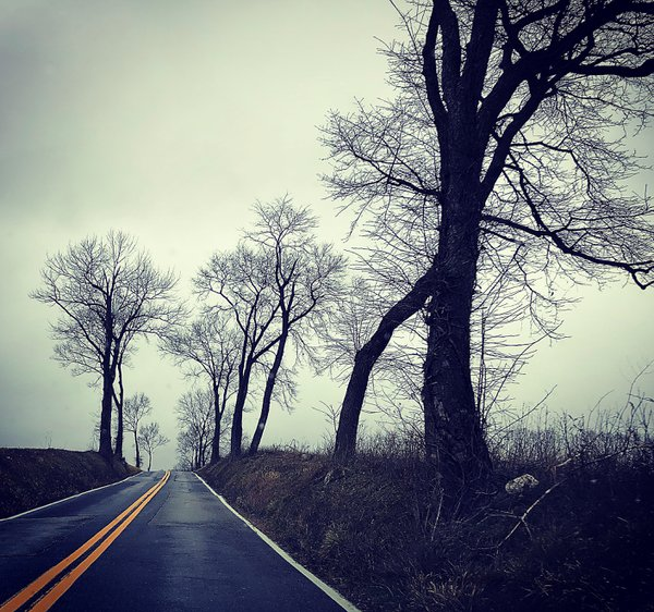 Gloomy country road in February thumbnail
