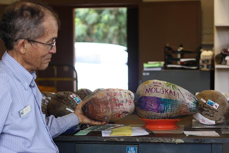 You Can Mail a Coconut to Anywhere in the World From This Post Office in Hawaii