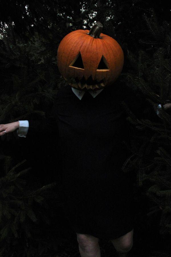 Dance of the pumpkin queen thumbnail