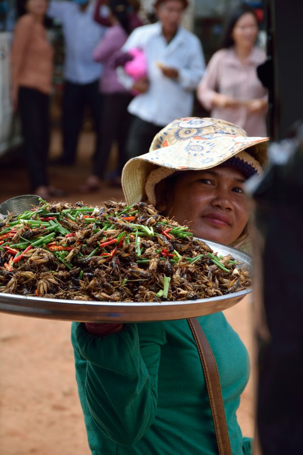 Cambodian women make a living by selling crunchy crickets thumbnail
