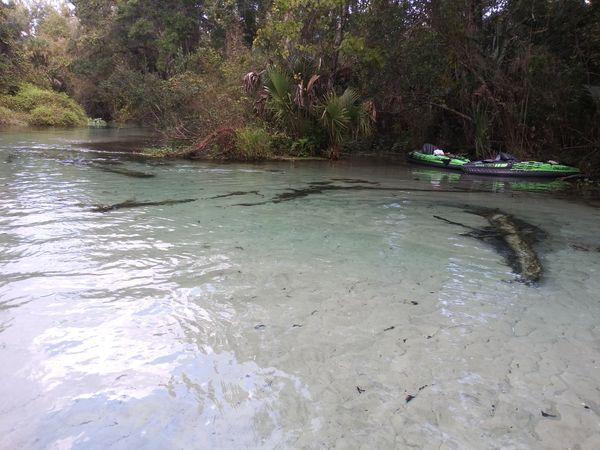 Crystal clear kayaking thumbnail