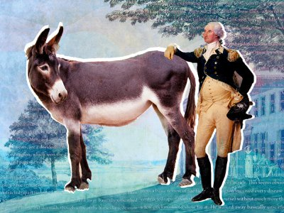 Washington, who tended to favor surprisingly silly names for his animals—his dogs answered to Sweetlips, Drunkard and Madame Moose—went literal when it came to the mule, who he called Royal Gift.
