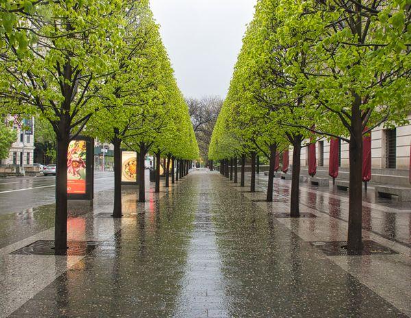 Rain on the Sidewalk thumbnail