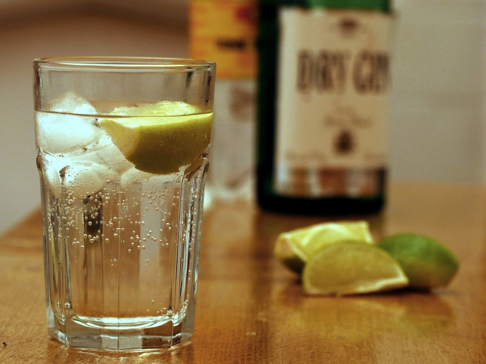 Gin_and_Tonic_with_ingredients.jpg