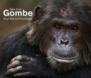 Preview thumbnail for Tales From Gombe