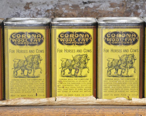 three old cans in Montana thumbnail