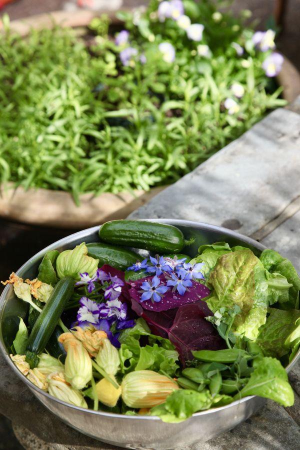 Garden Bounty thumbnail