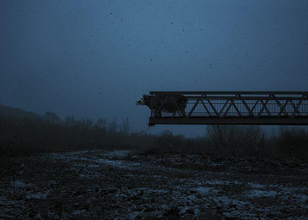 Broken Bridge – Betty (03.2011 - 02.2017) thumbnail