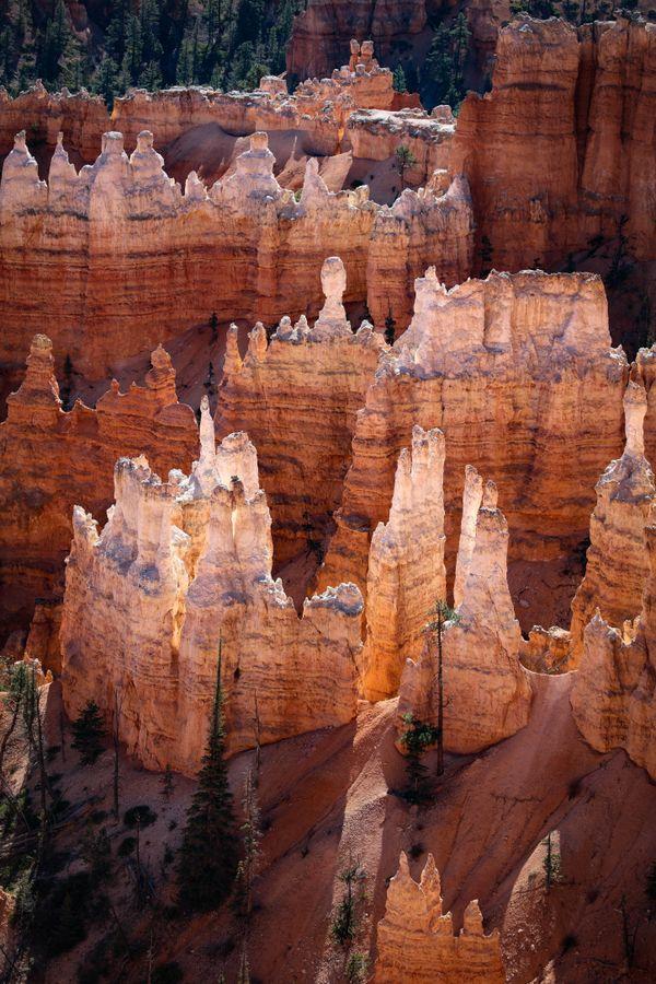 Hoodoos, Bryce Canyon National Park thumbnail