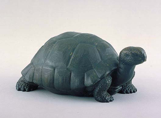 manship_tortoise_AAM_oct16.jpg