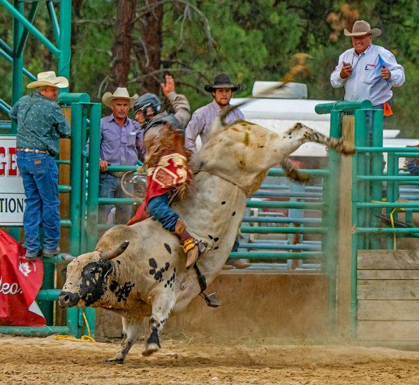 Bull Riding 2 thumbnail
