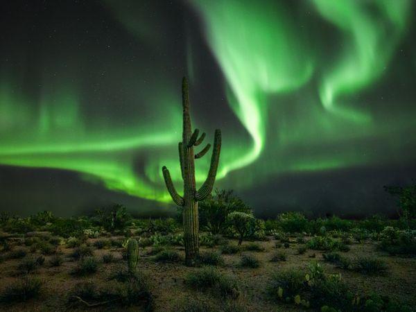 Desert Aurora thumbnail