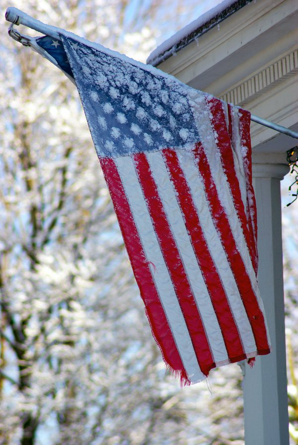 A tattered and frozen flag discovered during a morning stroll thumbnail