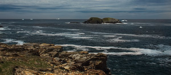icebergs off elliston, nl thumbnail