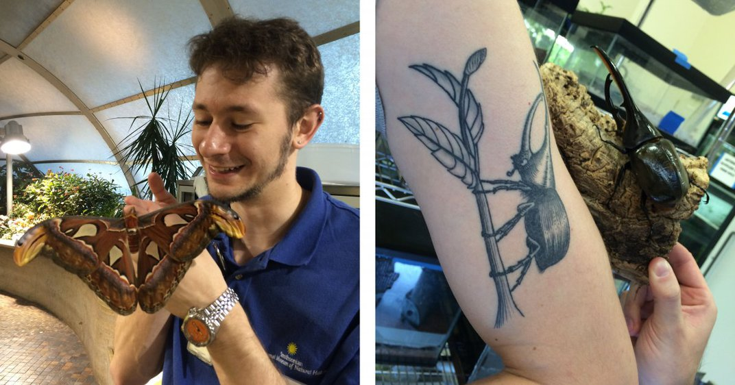 Arthur Earle shows off an Atlas Moth and his Hercules beetle tattoo.