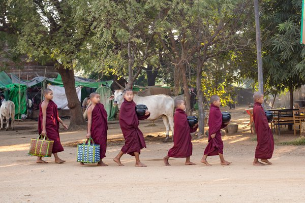 Small boys serving for a Buddhist monastery thumbnail