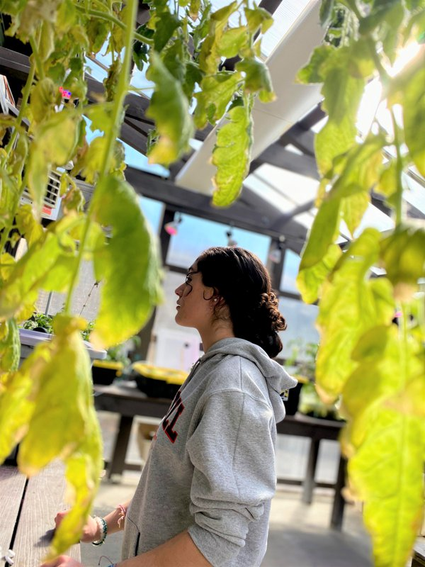 Girl in a greenhouse. thumbnail