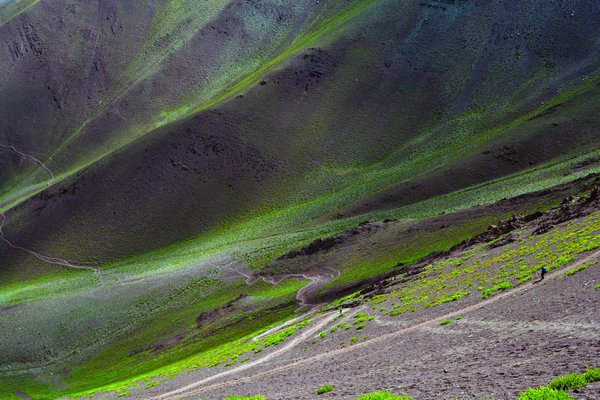 Virgin green valley. thumbnail