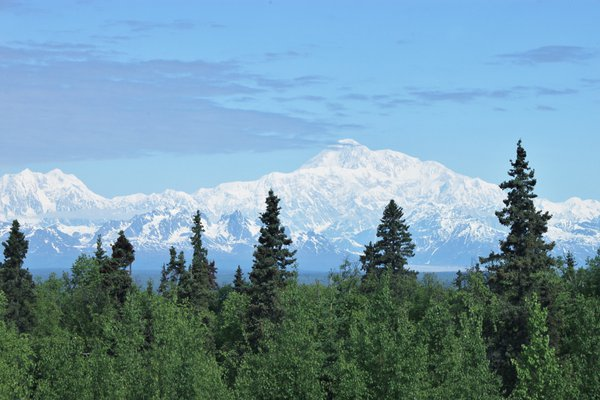 A picture of Mt Mckinley 70 miles away from Talkeetna Alaska. thumbnail