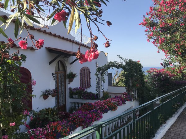 A cottage overlooking the sea in Ischia, Italy thumbnail