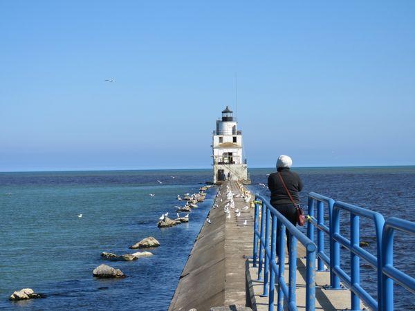 Manitowoc Lighthouse and gulls thumbnail