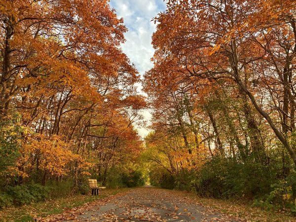 Northwest Ohio Fall Magic thumbnail